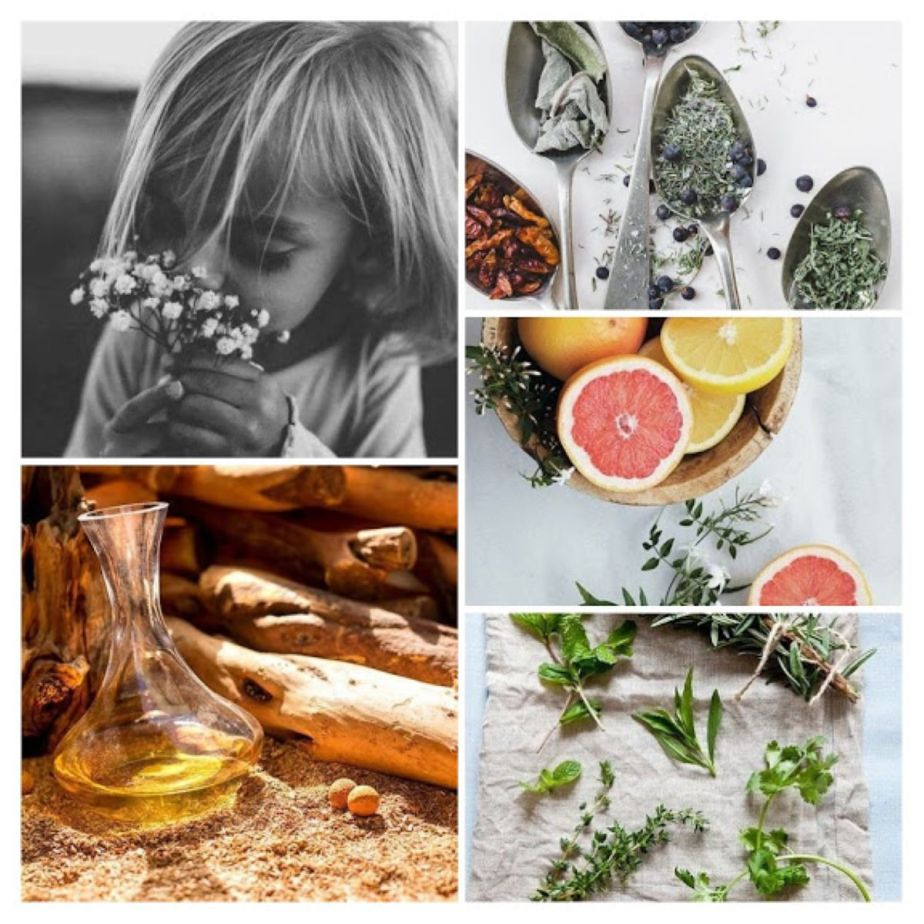Can Fragrances Have Medicinal and HealingQualities?